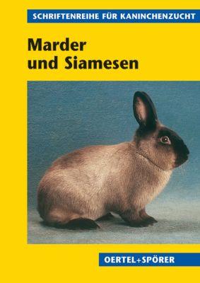 Marder und Siamesen